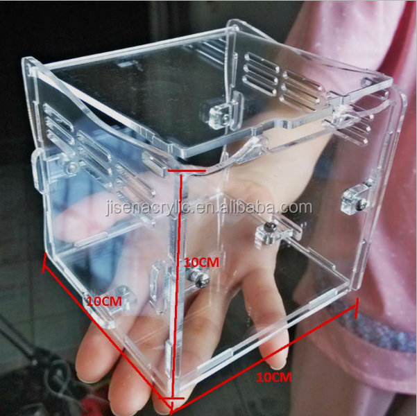 2017 Wholesale Transparent Acrylic Reptile Fish Tank Insect Box