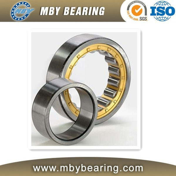 linear NU 1020 Cylindrical roller bearing NU1020