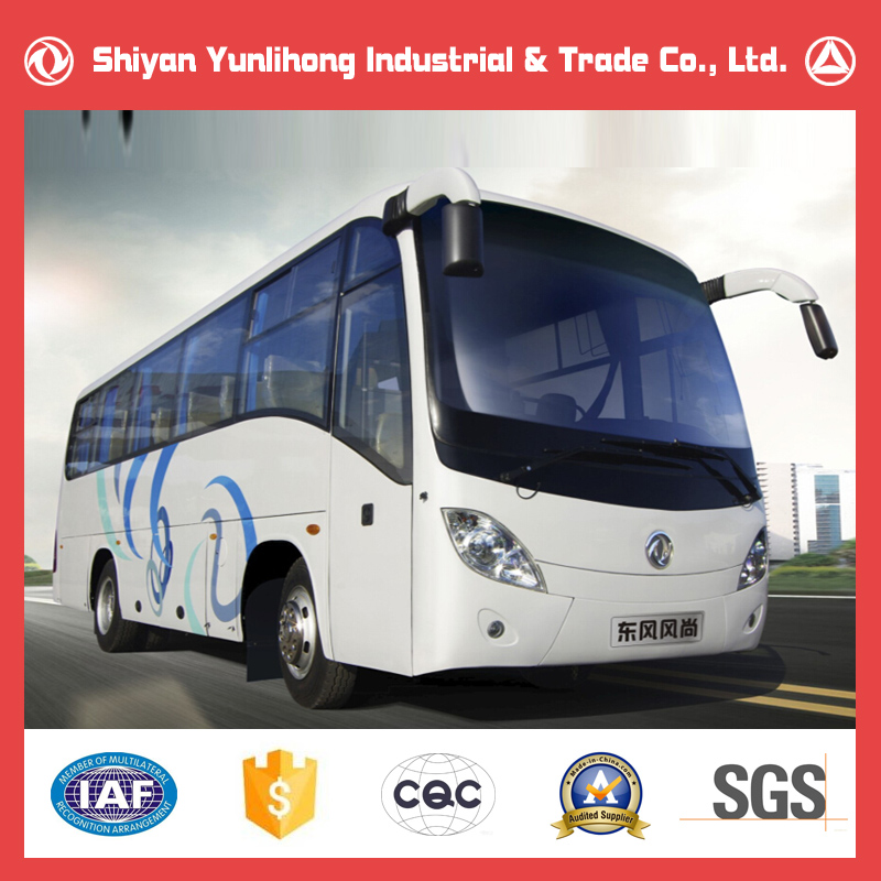 Dongfeng 35 Seats Colours Of Buses /New Bus For Sale /Luxury Tour Bus