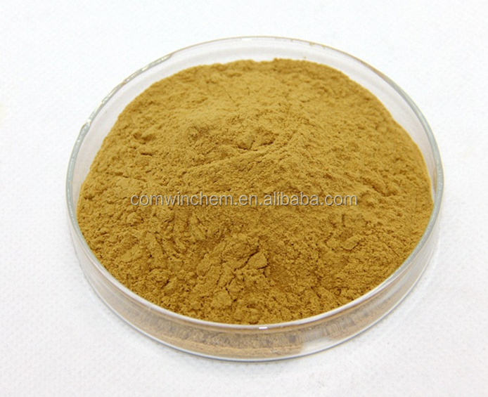 Sweet Tea Extract, Sweet Tea Leaf Extract Rubusoside 70% 80% Rubusoside Powder