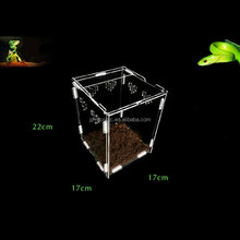 Small pet centipede scorpion snake acrylic reptile screen cage