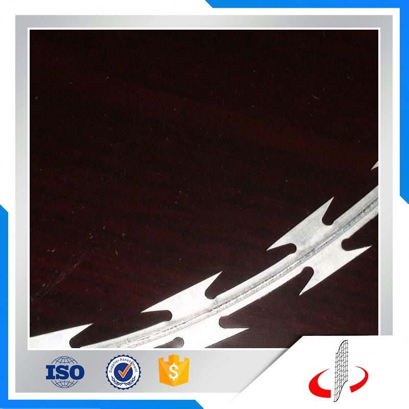 Razor wire for security/razor wire/stainless steel razor wire