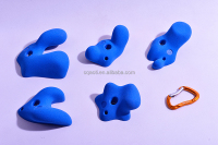 5 Packs real display large size rock climbing holds