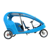High Quality Family Use 3 Wheel Electric Tricycle Taxi Bike, EU Popular 250 Watt Pedicab Carries Two Adult Passengers