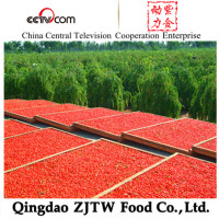 Organic goji berries dried goji berries wolfberry Manufacturer farm factory