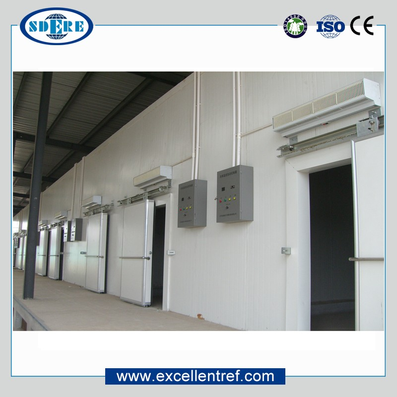 High Quality Freezer Cold Store Room for Fish and Meat