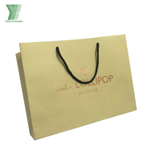 Fashional Custom Printed Luxury Gift Shopping Big Paper Bag with Your Own Logo