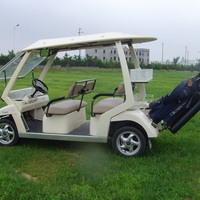 cool electric golf cart for sale