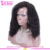 Best selling afro kinky curly lace wig natural color unprocessed virgin malaysian hair curly afro wigs for black women