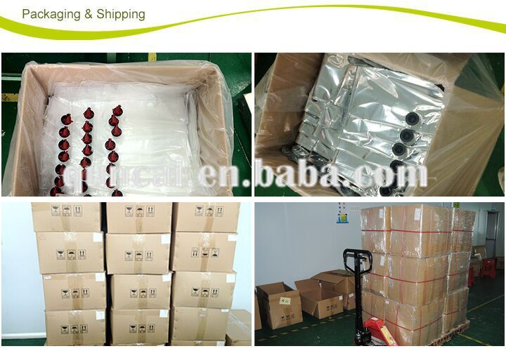 Plastic packaging bag in box PE fitment