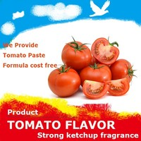 WB21003 strong tomato flavour for Dairy and beverage
