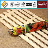 fancy style flower printed tube colored pencil for kids mania