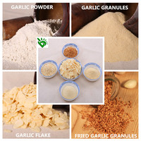 High Quality Dried Garlic Powder/Garlic Flakes/Garlic Granules with Best Price