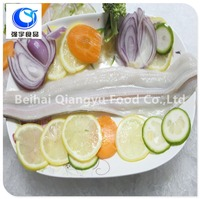 frozen seafood fresh conger eel fillets