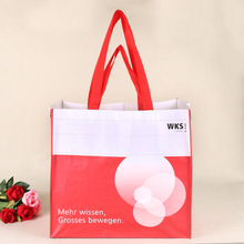 new arrival color printed popular pp woven shopping bag vietnam