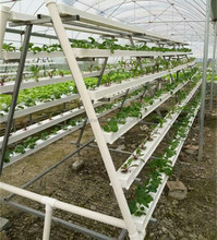 new agricultural technology greenhouse gutter indoor growing