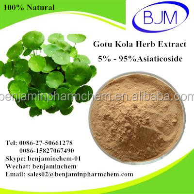 100% Natural Gotu Kola Herb Extract Asiaticoside