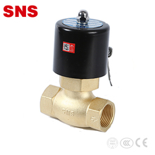 China SNS brand cheap car pneumatic solenoid valve 220v ac