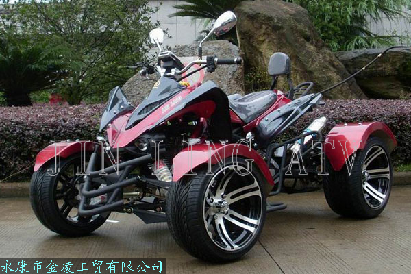 automatic transmission scooter 300cc racing sport buggy. Black Bedroom Furniture Sets. Home Design Ideas