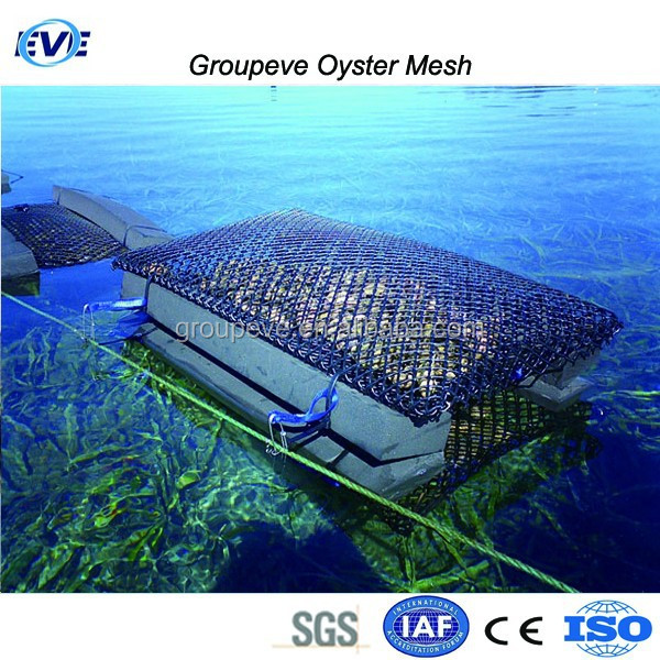 HDPE Plastic Net for Shellsifh Cultivation