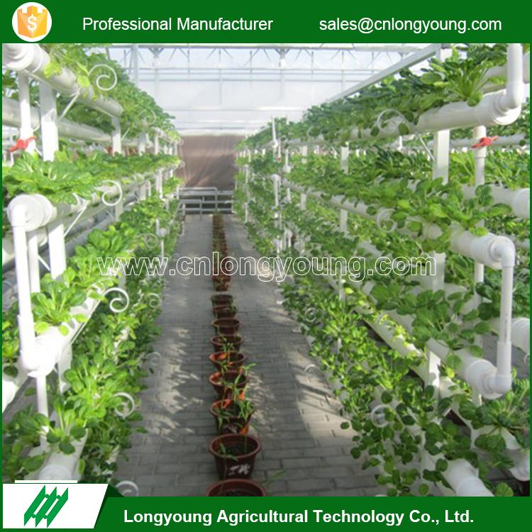 New fashion industrial plants grow hydroponic agriculture systems