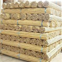 Factory raw tonkin bamboo cane