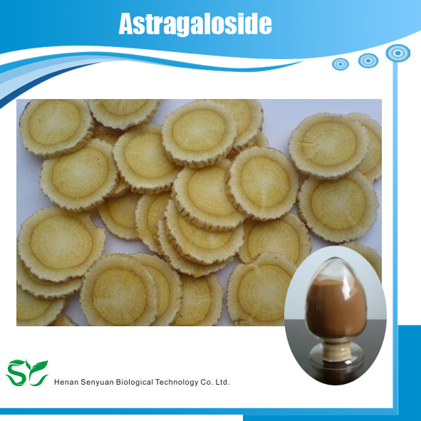 GMP Manufacture Supply High Quality Astragalus Extract Polysaccharides/Astragaloside IV /Cycloastragenol