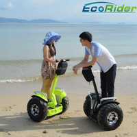 China cheap 2 wheeled electric scooters, electric vehicle