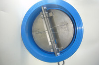Dual plate wafer check valve with EPDM seat