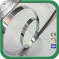 High Quality 316L Stainless Steel Srips
