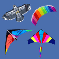 outdoor toy different types of kites