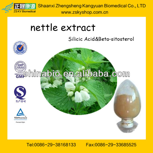 100% Natural Stinging Nettle Extract From GMP Assessment Supplier