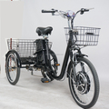 Competitive price 36V 350W three wheel adult Electric Tricycle