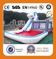 Inflatable water slide,inflatable shark water slide with pool,inflatable water slide for kids and adult
