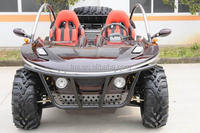 TNS 800cc low price custom pedal go karts for adults