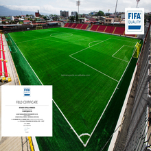 FIFA approved Artificial Lawn for Football Grass Field