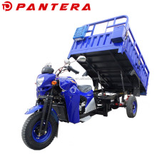 Chongqing New Motorized Adulte Moto Triciclo