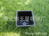 Factory wholesale square plastic flower pot for succulent
