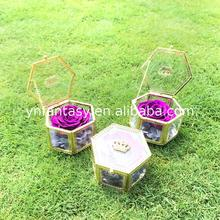 Fancy Brand Enchanted Rose Malaysia Customized Gift Beautiful Pictures of Flowers
