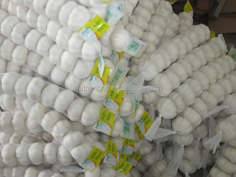 Chinese New Fresh White Garlic in cold Storage