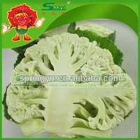 Supply frozen broccoli, brand names fresh vegetable supplier