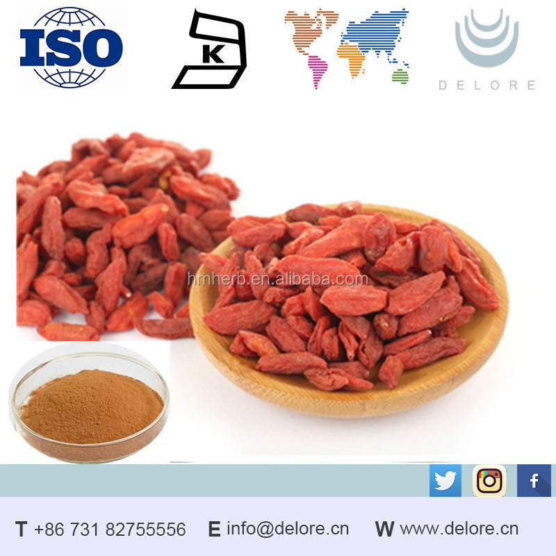 Factory Supply free sample goji berry extract Wolfberry extract powder 100% natural