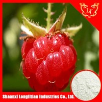 organic raspberry seed/fruit powder