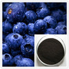 /product-detail/bilberry-95-opc-accinnium-vitis-idaea-l-extract-60665346725.html