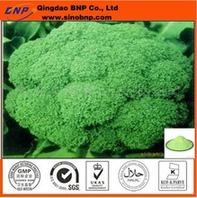 GMP&Kosher Qingdao BNP Organic Broccoli Seed Extract Powder rich in Sulforaphane