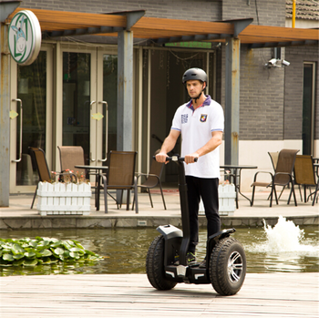 IO CHIC Wholesale 2 wheel electric scooter with 800 watt-1000 watt motor