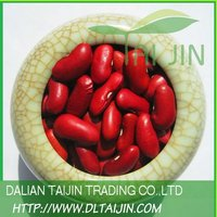 2012 NEW CROP BRITISH TYPE RED KIDNEY BEAN/ BRITISH RED KIDNEY BEAN