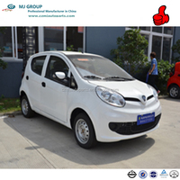 Made in China Small e Car for citizen series for sale