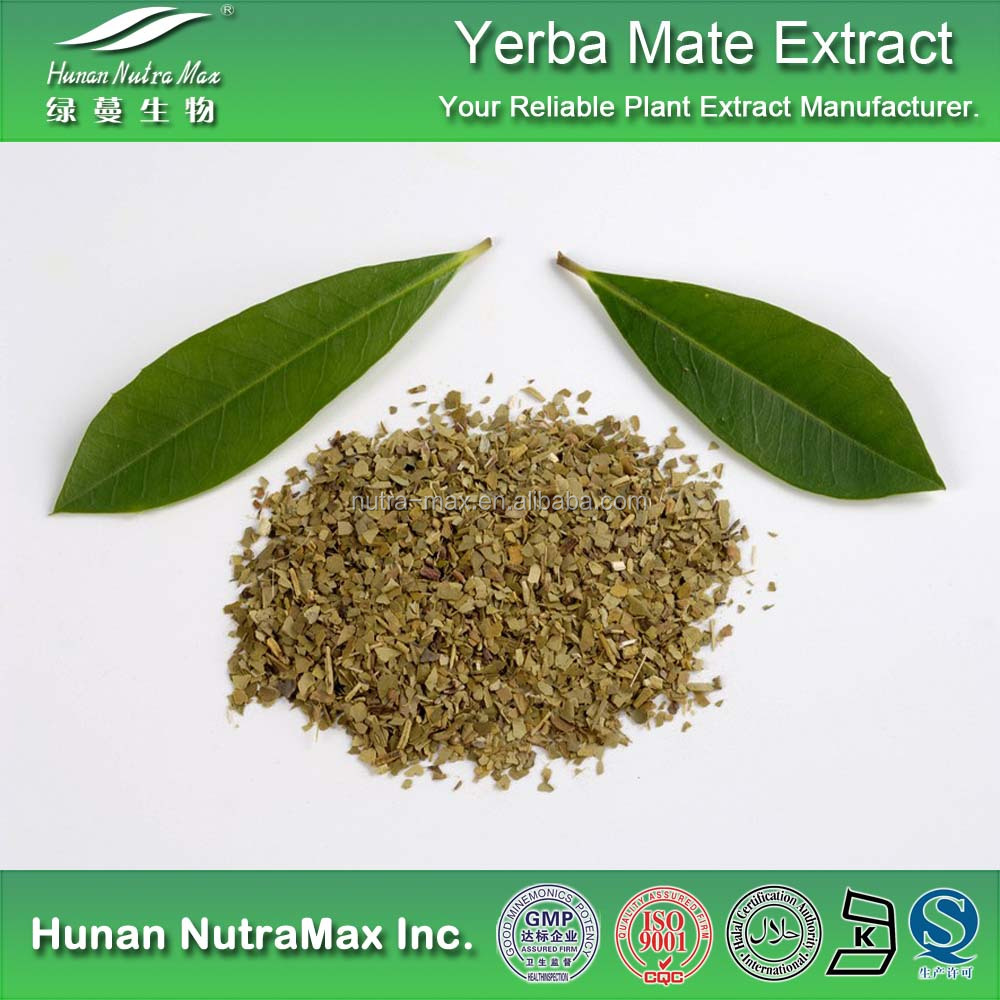 High Quality Yerba Mate Extract,Yerba Mate Extract Powder,Yerba Mate P.E.4:1-20:1