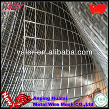 16 gauge galvanized welded wire mesh for fence&cages